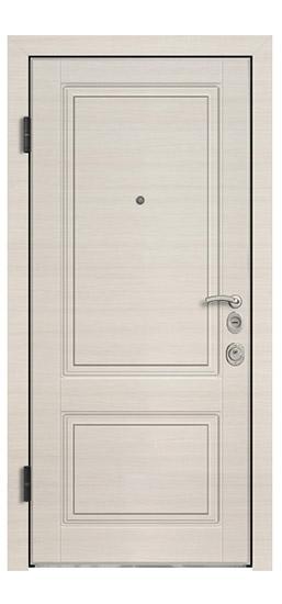 Статус входные двери